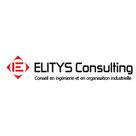 #1 Interview d'une acheteuse projet chez ELITYS Consulting